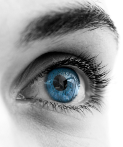 Ophthalmology Los Angeles